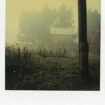 Andrei Tarkovsky Polaroid_Russian Film Hub_10