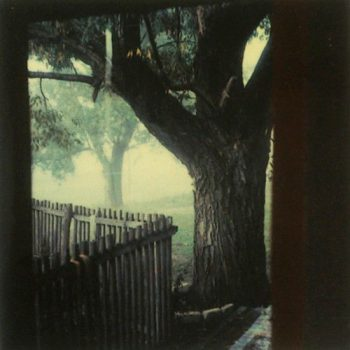 Andrei Tarkovsky Polaroid_Russian Film Hub_26