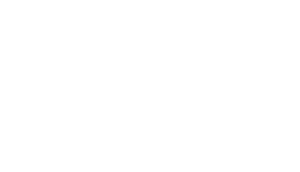 Logo for the website, rusandsov.com