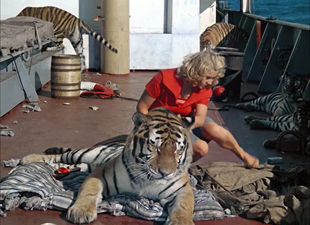 Striped Trip Russian movie